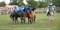 Особенный секрет казахов: венгерских спортсменов обучили кокпару