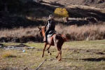 Бросить все и уехать в горы: удивительная история молодой грузинки - видео