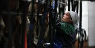 Работница во время дойки коров на молочно-товарной ферме, архивное фото