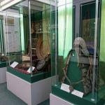 1885 жылы Абай заттарын өлкетану музейіне тапсырыпты. Олардың арасында ақынның екінші жары Әйгерімнің таза тері, ағаш пен күмістен жасалған ер-тоқымы болған екен.