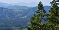 Природа Алтая, архивное фото