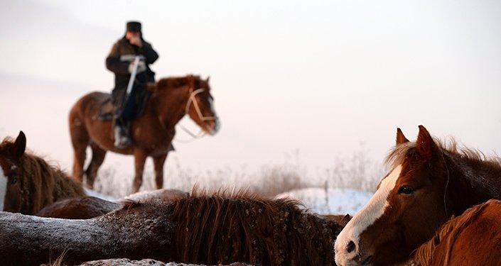 Архивное фото пастуха на лошади