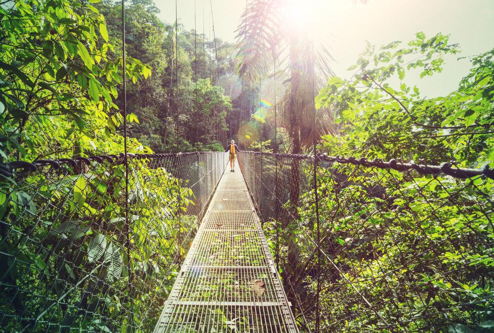 Отправившись в Коста-Рику (Центральная Америка), вы получите возможность прогуляться по джунглям и вулканам.