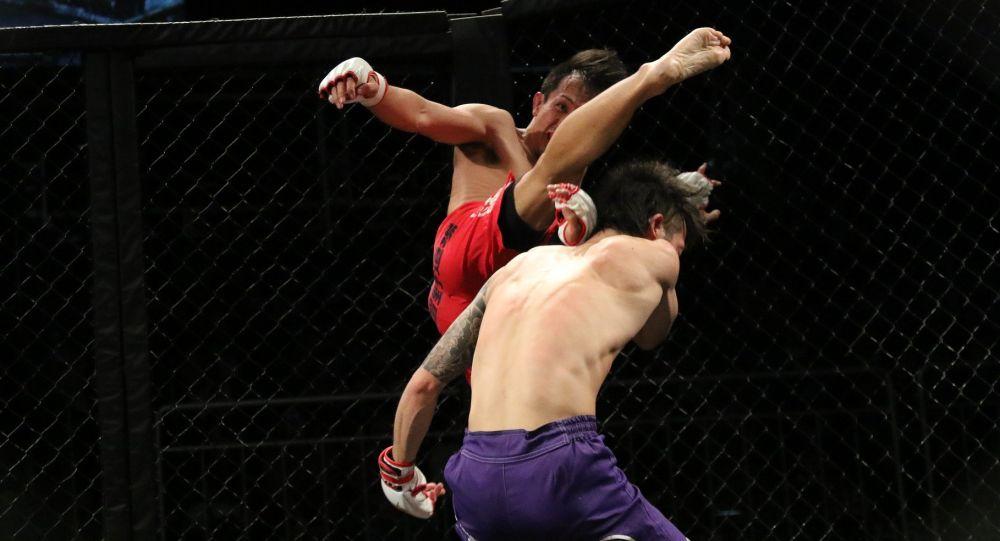 Поединок бойцов MMA, иллюстративное фото
