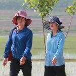 Девушки на одной из улиц Пхеньяна