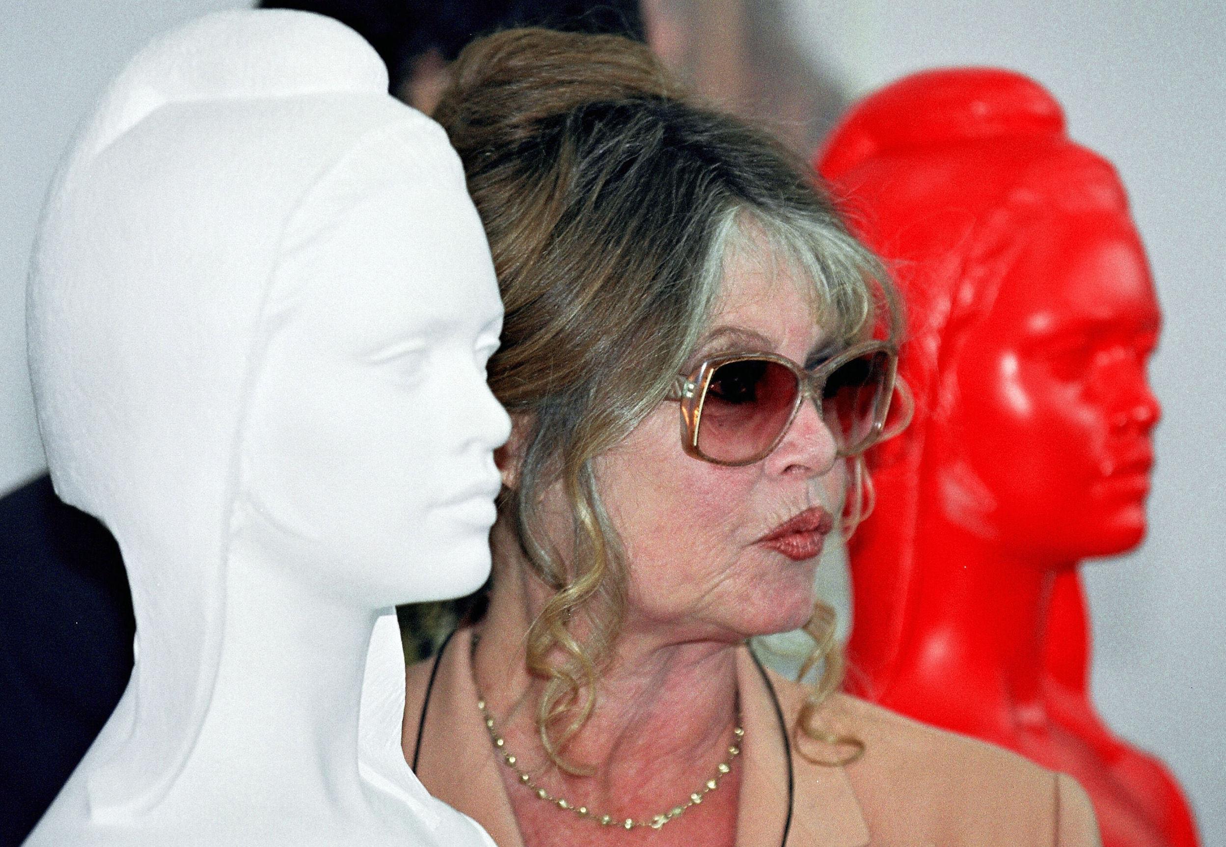 Французская актриса Брижит Бардо, фото из архива