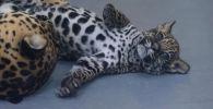Играет, как котенок: в зоопарке Алматы родился детеныш ягуара - видео