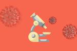 Анализ коронавируса