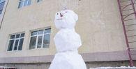 Морозная погода в Нур-Султане