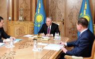 Нурсултан Назарбаев принял заместителя председателя Ассамблеи народа Казахстана Жансеита Туймебаева
