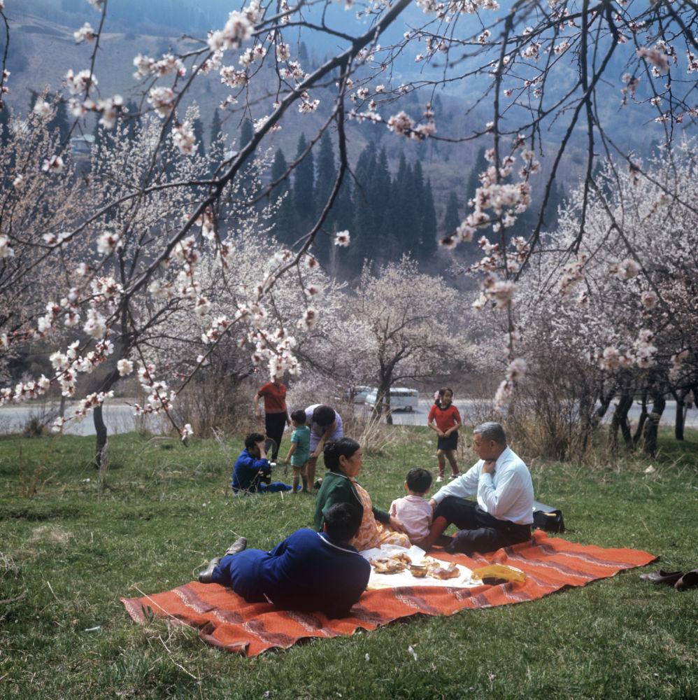 Пикник в горах Заилийского Алатау. 1971 год