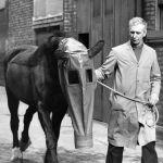 В 1940 году в Лондоне противогазы надевали даже лошадям. Животных защищали от газовой атаки