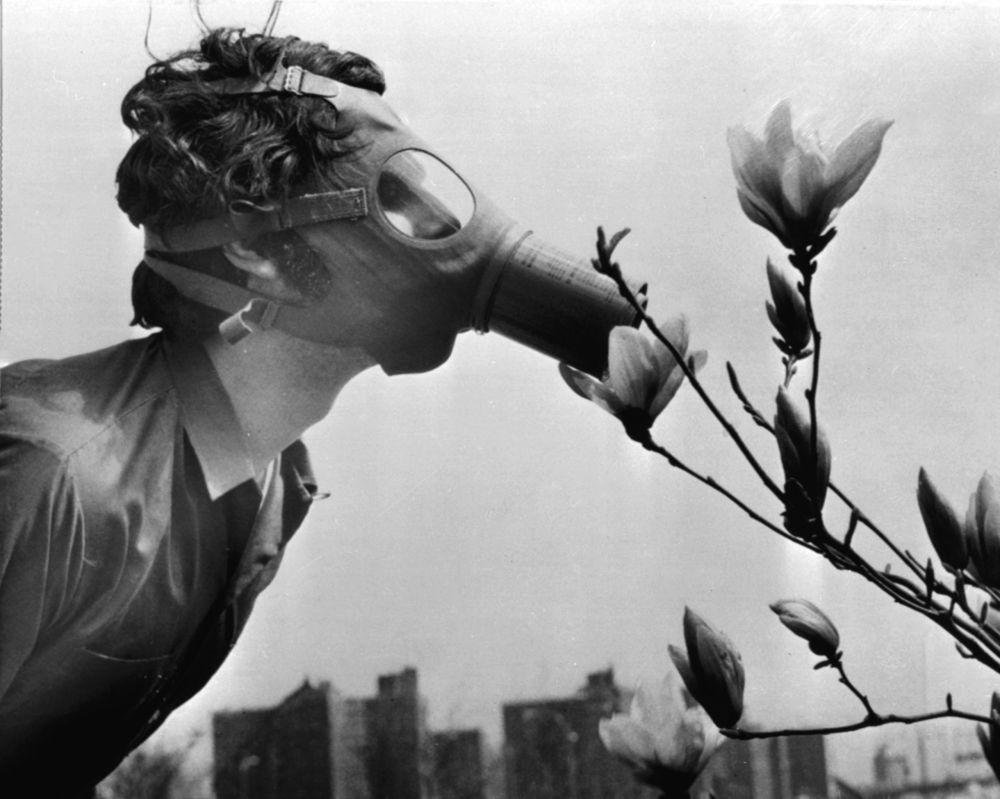 Студент в противогазе нюхает цветок во время демонстрации на День Земли, США, 1970 год