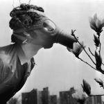 АҚШ, 1970 жыл. Газға қарсы маска киген студент Жер күніне арналған  демонстрация кезінде гүл иіскеп тұр.