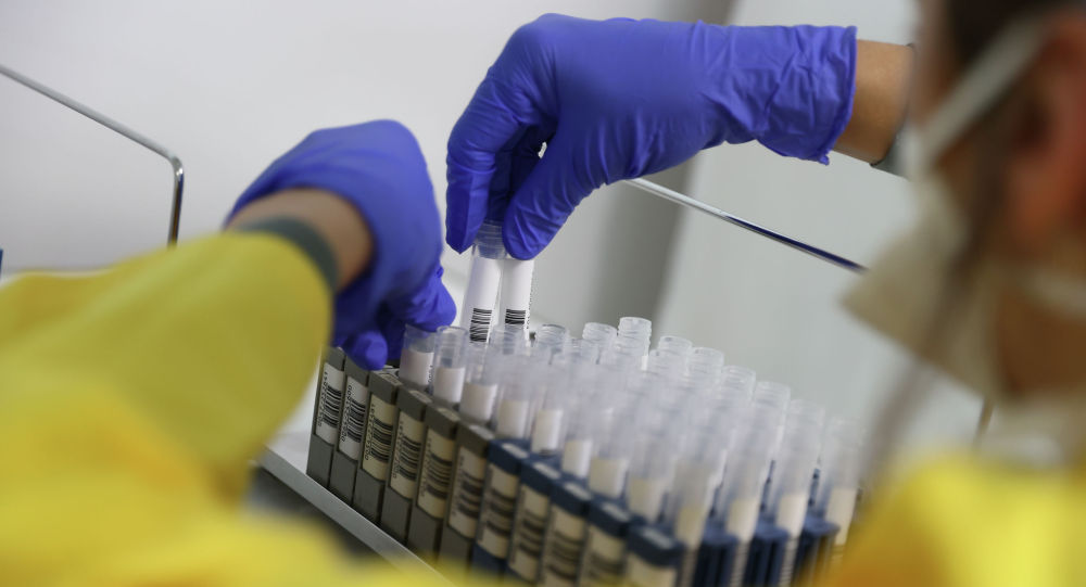 Сотрудник лаборатории расставляет пробирки с анализами на коронавирус