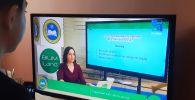 Школьники в Казахстане начали обучаться дистанционно