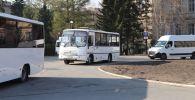 Автобусы, на которых доставляют студентов в Казахстан