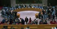 Россия осудила решение Запада заблокировать в ООН резолюцию по борьбе с COVID-19