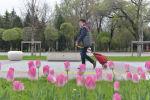 Кто-то очень устал сидеть дома и захотел увидеть кусочек прекрасной алматинской весны