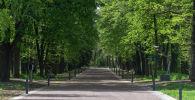 По всей территории ботанического сада обновили дороги