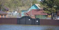 Паводок в Северном Казахстане