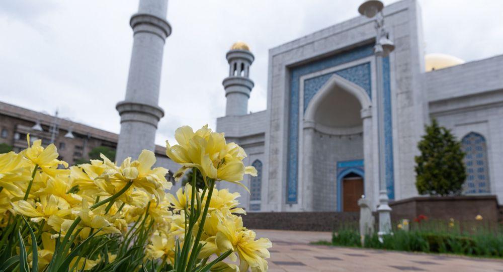 Тюльпаны у мечети в Алматы