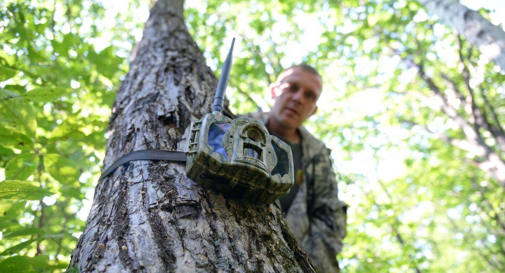 Егерь устанавливает фотоловушку в заповеднике