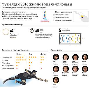 Футзалдан 2015 жылдын элем чемпионаты