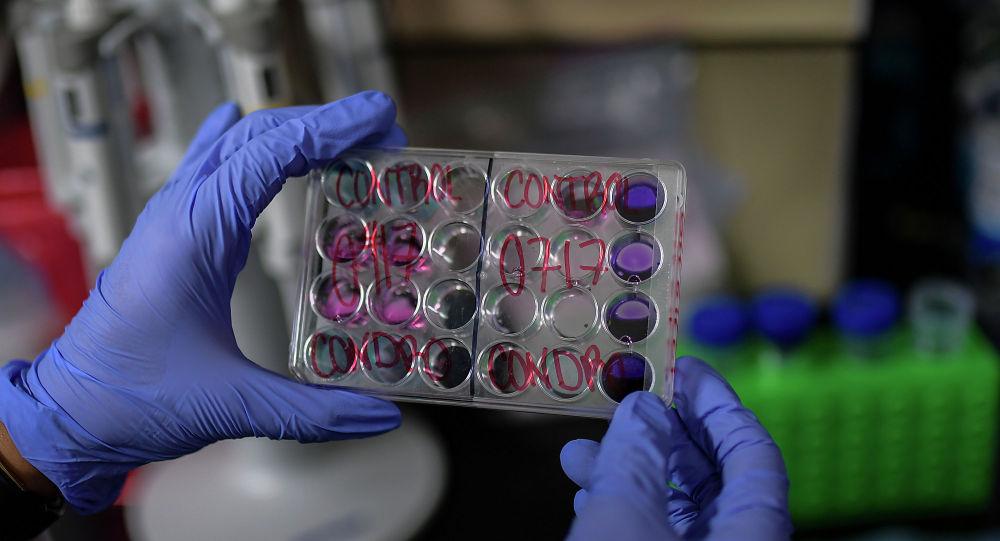 Образцы для исследования по разработке вакцины от коронавируса в руках у сотрудника лаборатории