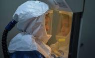 Сотрудница лаборатории в костюме биологической защиты работает с образцами коронавируса