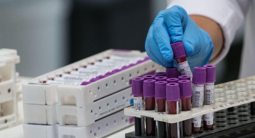 Сотрудник лаборатории расставляет прбирки с пробами для анализа на коронавирус