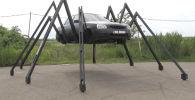 Краснодарский умелец собрал из Лады Приоры огромное насекомое