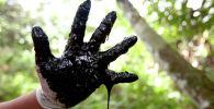 Нефть экология природа рука