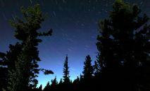 Звездное небо над тайгой