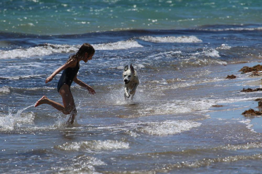 A girl plays with a dog on the beach, amid the outbreak of the coronavirus disease (COVID-19) in Yevpatoriya, Crimea, June 4, 2020.