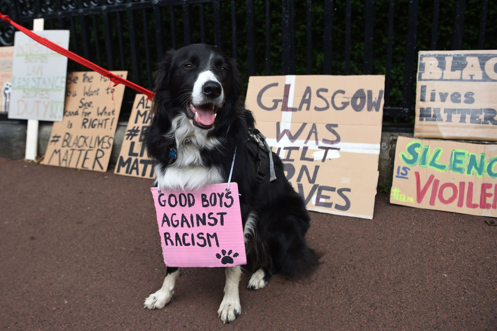 A dog wearing a placard  is posed for a photograph in front of placards, left outside Holyrood Palace after a demonstration in Edinburgh on June 7, 2020, organised to show solidarity with the Black Lives Matter movement in the wake of the killing of George Floyd, an unarmed black man who died after a police officer knelt on his neck in Minneapolis. Taking a knee, banging drums and ignoring social distancing measures, outraged protesters from Sydney to London on Saturday kicked off a weekend of global rallies against racism and police brutality.