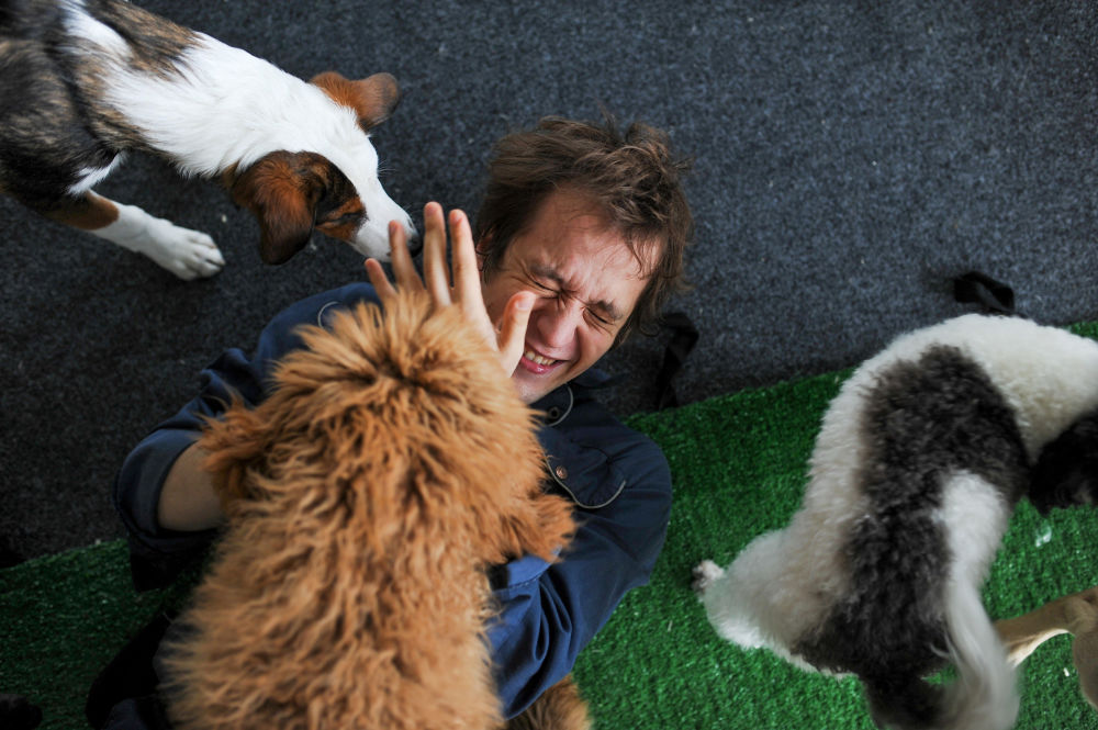 Artist and dog trainer of the Great Moscow State Circus Mikhail Ermakov reacts during a rehearsal with dogs amid the outbreak of the coronavirus disease (COVID-19) in Moscow, Russia, in this handout picture released June 4, 2020.