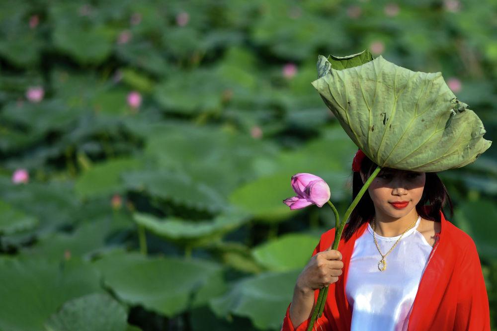 Девушка под листом лотоса