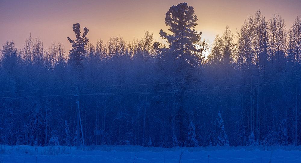 Архивное фото зимнего туманного утра