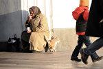 Бездомная кошка трется пожилой женщины попрошайничеством