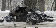 Бездомный в зимнем парке на скамейке, фото из архива