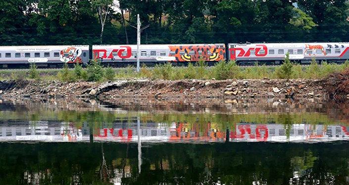 Поезд РЖД Россия Москва - Владивосток с леопардом на вагоне