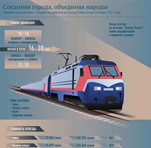 Инфографика скорый поезд Алматы-Ташкент