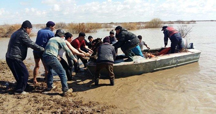 Эвакуация жителей из-за разлива Сырдарьи