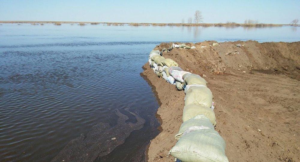 Укрепление берега реки во время паводка в Карагандинской области