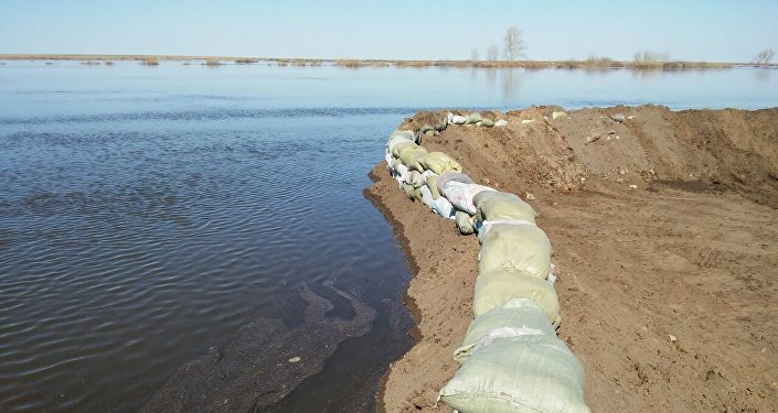 Укрепление берега реки во время паводка