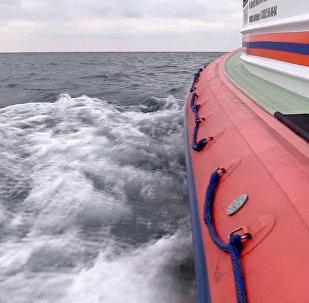 Поисково-спасательная операция на месте кораблекрушения сухогруза Герои Арсенала в акватории Черного моря.
