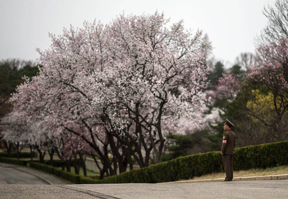 Музей Ким Ир Сена в Мангёндэ в провинции Пхеньяна
