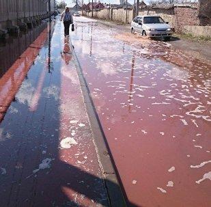 Реки из сока потекли в России