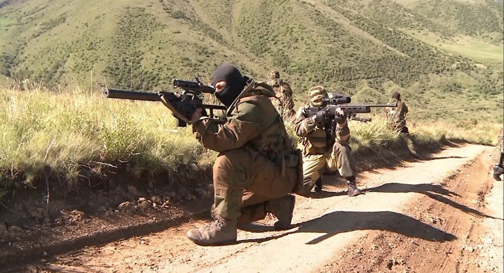 Шойгу рассказал обусилении военных баз вТаджикистане иКиргизии